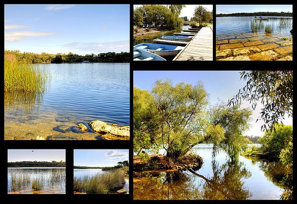 Imagevixen Photography - Yanchep National Park Collage