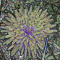 A Dandelion By A Different Color by William Hanna
