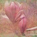 A Peek Of Spring by Arlene Carmel