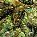 Alien Sea Eggs by Sandra Selle Rodriguez