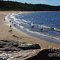 Along The Shore by Dora Sofia Caputo Photographic Design and Fine Art