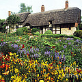 Anne Hathaway's Cottage by Paul Felix
