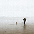 At The Beach On A Foggy Day by Tom Janca