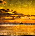 Autumn Sunset Over Ailsa Craig by Tylie Duff