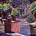 Bel-air Gardens by David Lloyd Glover