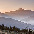 Ben Lomond Sunrise by Rod McLean