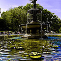 Bethesda Fountain - Central Park  by Madeline Ellis