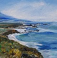 Big Sur Coastline by Eric  Schiabor