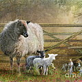 By The Gate by Trudi Simmonds