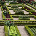 Cabbage Garden Chateau Villandry  by Christiane Schulze Art And Photography