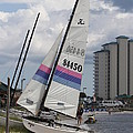 Catamarans by Michelle Powell