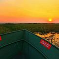 Chobe River Sunset by Amanda Stadther
