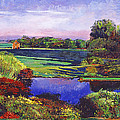 Country View Estate by David Lloyd Glover