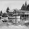 Net Shed Gig Harbor by Jack Pumphrey