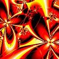 Flaming Red Flowers by Anastasiya Malakhova