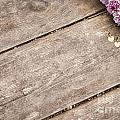 Flower Frame On On Wood Background by Gal Eitan
