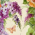 Flowering Butterfly Bush by Annemarie Luaces