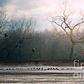 Flying Geese Surrealism by Lila Fisher-Wenzel