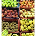 Fruit Assisi Italy Market by Patricia E Sundik
