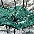 Glass Lily Pad  by Susan Herber