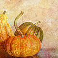 Gourd And Pumpkins II by Heidi Smith