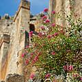 Italian Ruins In The Near Of The Lake Garda by Nick  Biemans