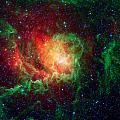 Lagoon Nebula by Jennifer Rondinelli Reilly - Fine Art Photography