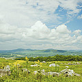 Large Blueberry Field With Mountains And Blue Sky In Maine by Keith Webber Jr
