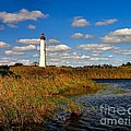 Lighthouse At The Water by Nick Zelinsky