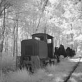 Locomotive With Wagons In Infrared Light In The Forest In Netherlands by Ronald Jansen