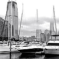 Marina In Black And White by Regina Geoghan