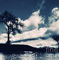 Moon by ARTSHOT  - Photographic Art