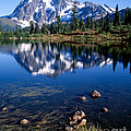 Mt. Shuksan Reflected In Picture Lake by Tracy Knauer