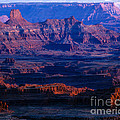 Needles Overlook  by Tracy Knauer