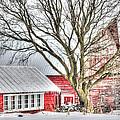 Oak Valley Farm by Patti Raine