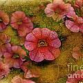 Pink Calibrachoa Photoart II   by Debbie Portwood