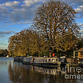 River Thames At Sandford Lock by Ian Lewis
