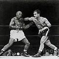 Rocky Marciano by Noe Peralez