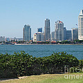 San Diego Viewed From Coronado Island by Claudia Ellis