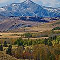 Sierras Mountains by Mae Wertz