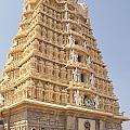Sri Chamundeswari Temple by Carol Ailles