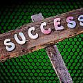 Success Sign Post by Donald  Erickson