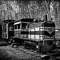 Susquehanna by Wayne Gill
