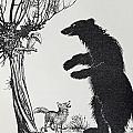 The Bear And The Fox by Arthur Rackham