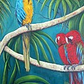 Three Is A Crowd,macaws by Sandra Reeves