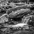 Waterfall Great Smoky Mountains Painted Bw    by Rich Franco