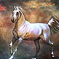 Wild Horse. by Andrzej Szczerski