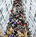Wintergarden Christmas Tree Pittsburgh by Terry DeLuco