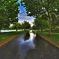 001 After The Rain At Hoyt Lake by Michael Frank Jr