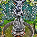 001 Fountain Buffalo Botanical Gardens Series by Michael Frank Jr
